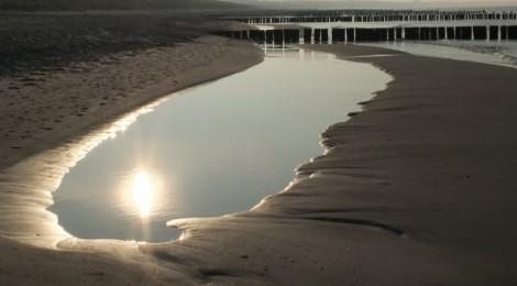 Strandspaziergang und -funde