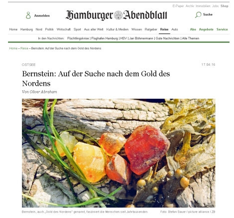 HamburgerAbendblatt2016-04-17
