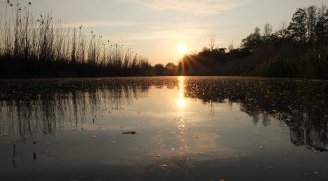 DEIN FLUSS DEIN LEBEN – Wasserwanderung für Männer auf dem Amazonas des Nordens