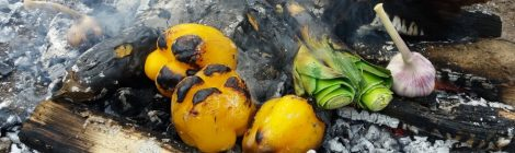 Outdoor-Cooking - Kochen & Genießen am offenen Feuer